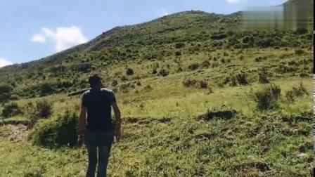 走进甘肃桑科大草原,人生必去的一个景点