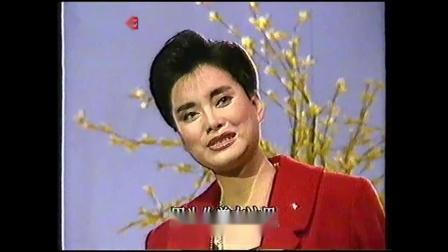洒下一片深情  毛阿敏【1991现场版】