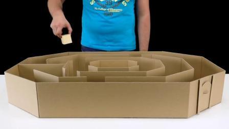 牛人用纸板为2只仓鼠制作8角形迷宫,迷宫不复杂,它们走得出吗?