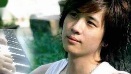 成人简易钢琴 电视剧十八岁的天空主题曲 李智楠《红色石头》88琴键即兴视奏D