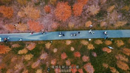 航拍广州的秋天