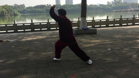 2019.11.27大夫山森林公园早晨习练(武当二十八式太极拳)