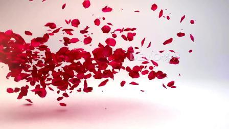 ae片头 pr模板 动态视频 1129 超唯美浪漫红色玫瑰花瓣飘落我们结婚啦婚礼庆典结婚爱情开场视频片头ae模板 会声会影素材