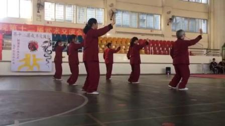 太极拳集体综合武术南拳会--韶关医学院第十二届武术交流会