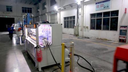 浙江百纳---五复合微波硫化生产线(意大利客户)