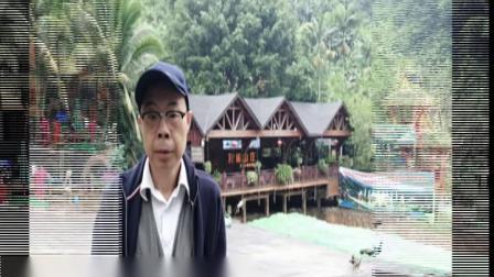2019金秋云南行:⒁西双版纳原始森林公园(上集)