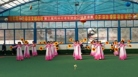 第三届鸡林村老年协会门球邀请赛(2)