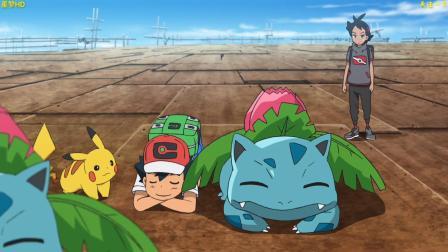精灵宝可梦剑盾第3集妙蛙草是不是很妙哇