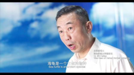 《海龟奇援》海龟勇士  史海涛