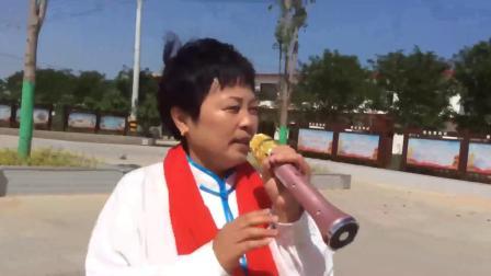 铜川王益区老年大学太极拳武式四十六式表演(张永利)