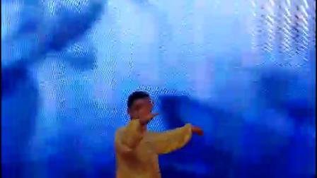 石馆长太极拳演出