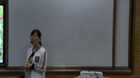 【获奖】冀教版七年级英语下册Unit 2 Lesson 9 Danny's School Project-童老师优质公开课教学视频(配课件教案)