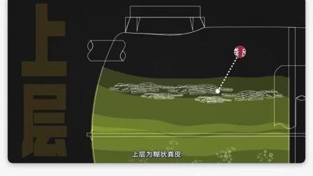 化粪池是怎么处理大便的?化粪池流出来的是什么?#当代生活说明书