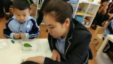 幼儿园四岁孩子的 科技课(浮力)