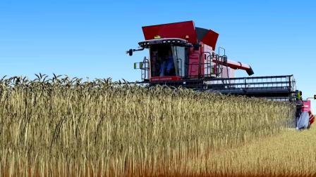 麦赛福格森 9505 联合收获机工作原理三维演示,很好的农机资料