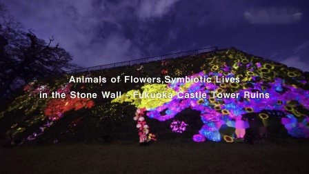 Animals of Flowers, Symbiotic Lives