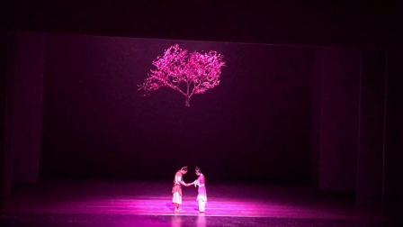 中国舞双人舞