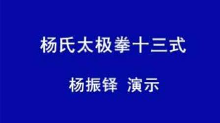 (1)杨振铎杨式太极拳十三式分解教学