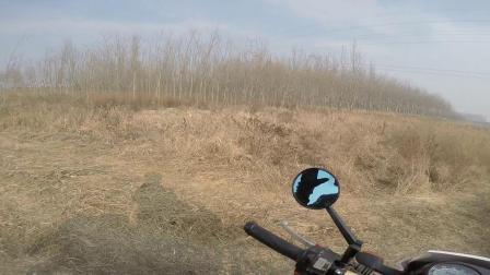 2019.12.8湿地公园