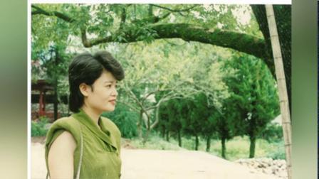 深秋红枫之美