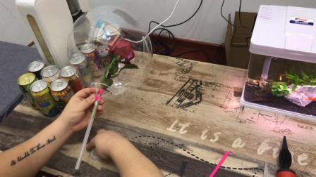 网红玫瑰花波波球制作教程