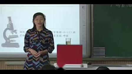 【获奖】教科版小学科学六年级下册一 微小世界用显微镜观察身边的生命世界(三)-邢老师优质公开课教学视频(配课件教案)