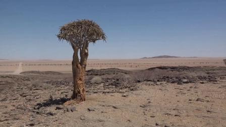 走进南部非洲 纳米比亚第6集 苏丝斯黎红沙漠之一总第6集