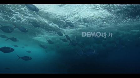 歌曲配乐视频 学校晚会 舞台视频 f113 海底水底波浪浪花波涛汹涌海洋鱼类鱼群视频实拍 跳舞舞蹈