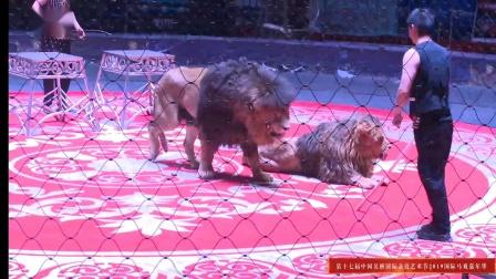 国际杂技《狮王争霸》中国