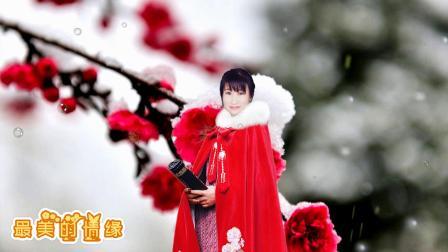 最美的情缘 ~音画  演唱:魏新雨