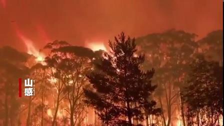 """【的""""逆行者"""" 深入火场 】据澳大利亚昆士兰州维斯托乡村消防局在近日发布的一则视频显示该局在博伊纳谷的布利杨、玛利亚山等地的森林火灾中扑救的..."""