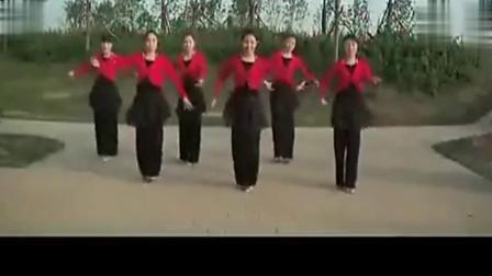 中老年广场舞大全 广场舞教学 最炫民族风[普清版]
