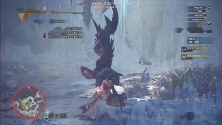 【猫长】PS4 怪物猎人:冰原【武器客制材料刷起来】