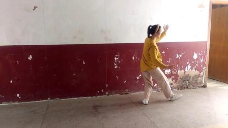 刘晓燕《混元太极拳二十四式》