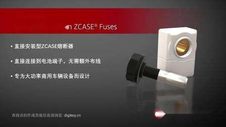 1分钟读懂Littelfuse ZCASE保险丝