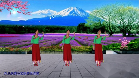 永州市冷水滩区秀舞芳华广场舞《次真拉姆》