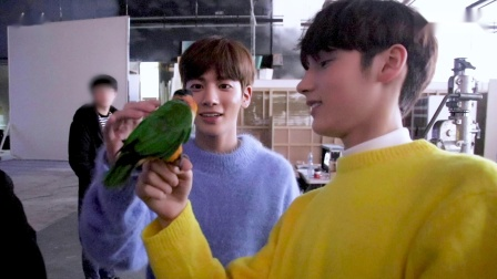 [T:TIME] How TXT Gets Close to Parrots - TXT