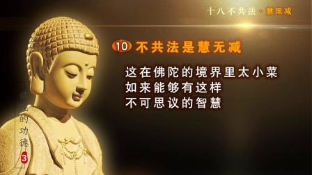 佛陀的功德03-20190526