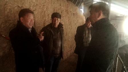 内蒙古鄂尔多斯市生态农业循环经济产业链