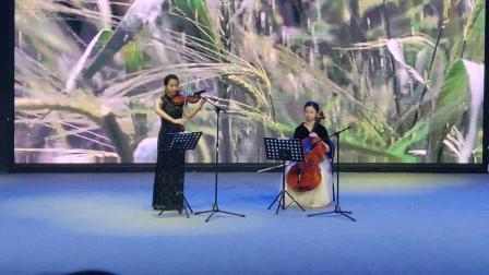 星硕琴行小提琴,大提琴