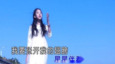 张雅婷 - 飞到梦想的地方(原版)