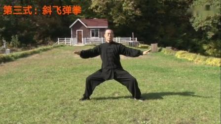 武当游龙太极拳內功养生九式(完整演练)