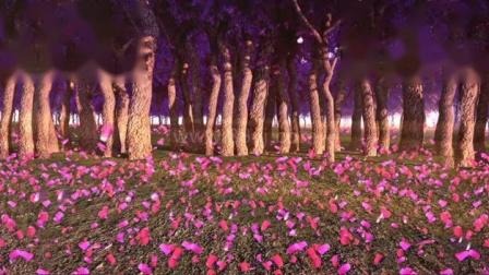 粉色桃花林,88vj全息素材网站