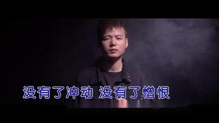杨小壮--一个人挺好--MTV--国语--男唱--高清版本
