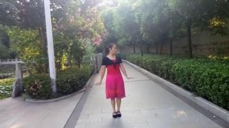 3  蝶舞仙子广场舞《远远的看着你》背面习舞2017年8月27日