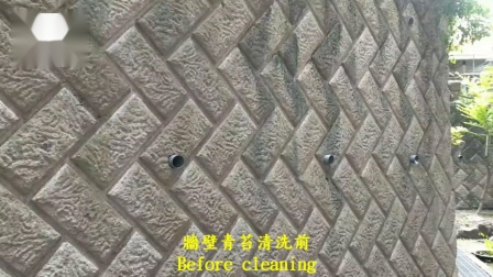 H-1611 國小校園-牆壁青苔清洗施工工程