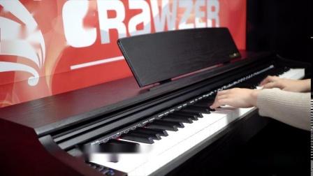 电钢琴演奏《 我愿意 》