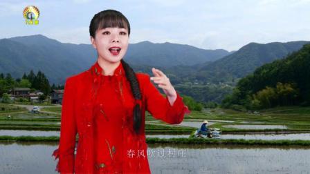 王二妮 - 黄土地上