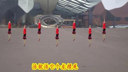 广场舞好学广场舞好跳