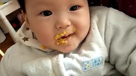 小元宝吃蛋黄